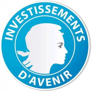 Investissements d'avenir, porteurs de programmes d'excellence en lien avec le SIRIC