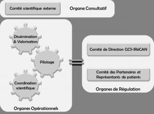 organisation, gouvernance et comités du siric iliad