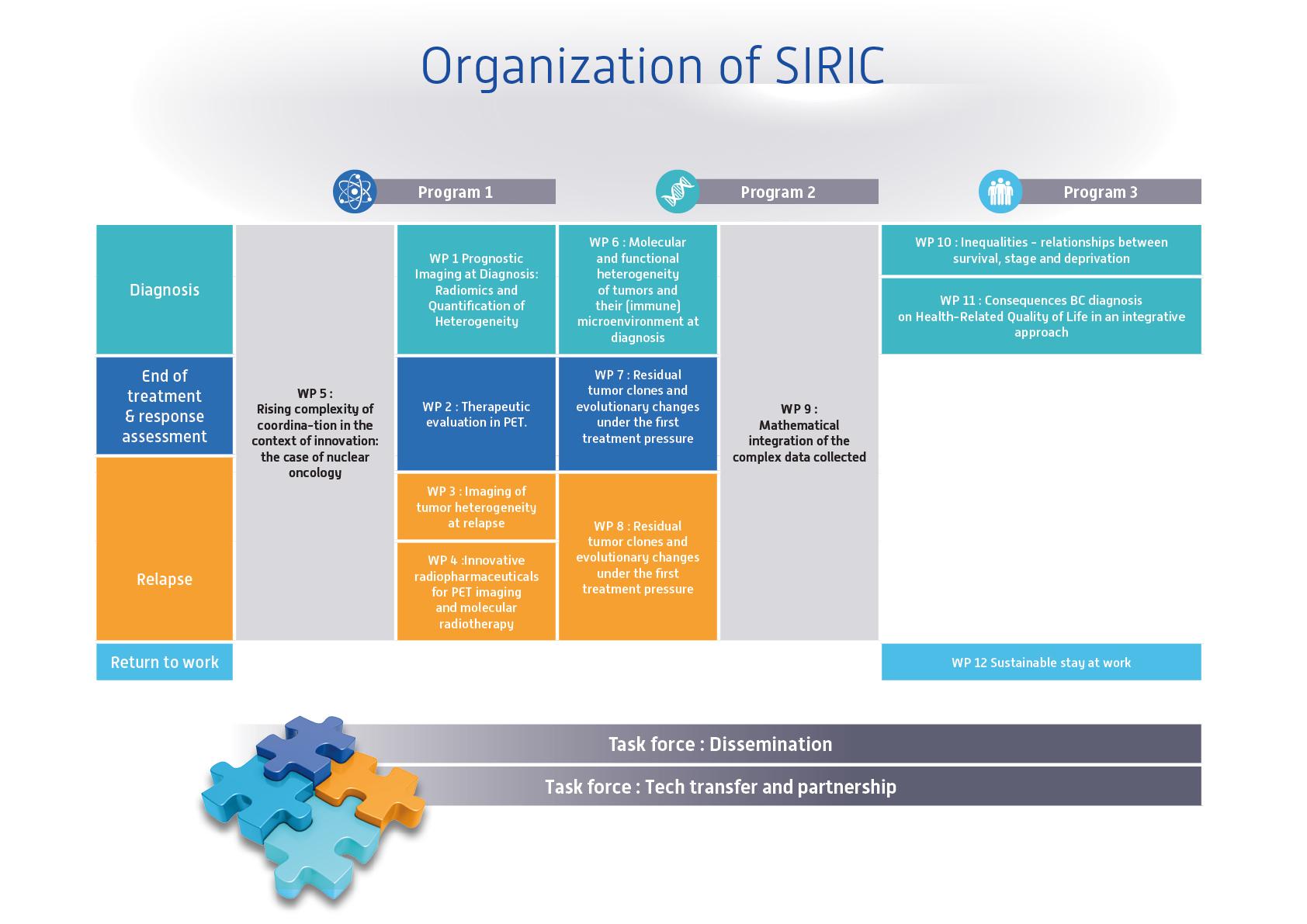 Organization of SIRIC